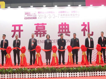 The Grand Opening of DPES Print Expo Huaqiao 2019