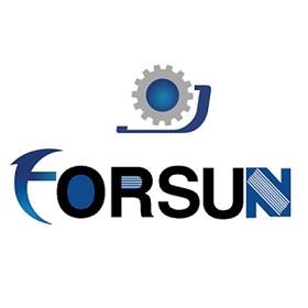Jinan FORSUN CNC Machinery Co. Ltd.